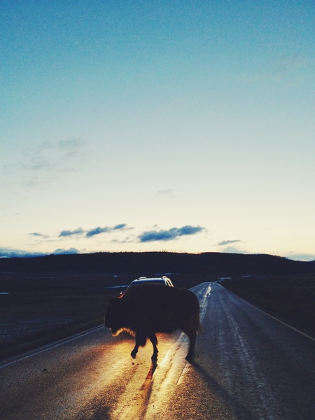 Kevin-russ-traveling-and-paying-the-bills-with-iphoneography