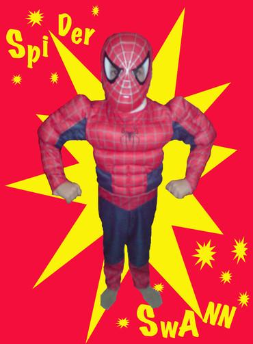 Spider_swann